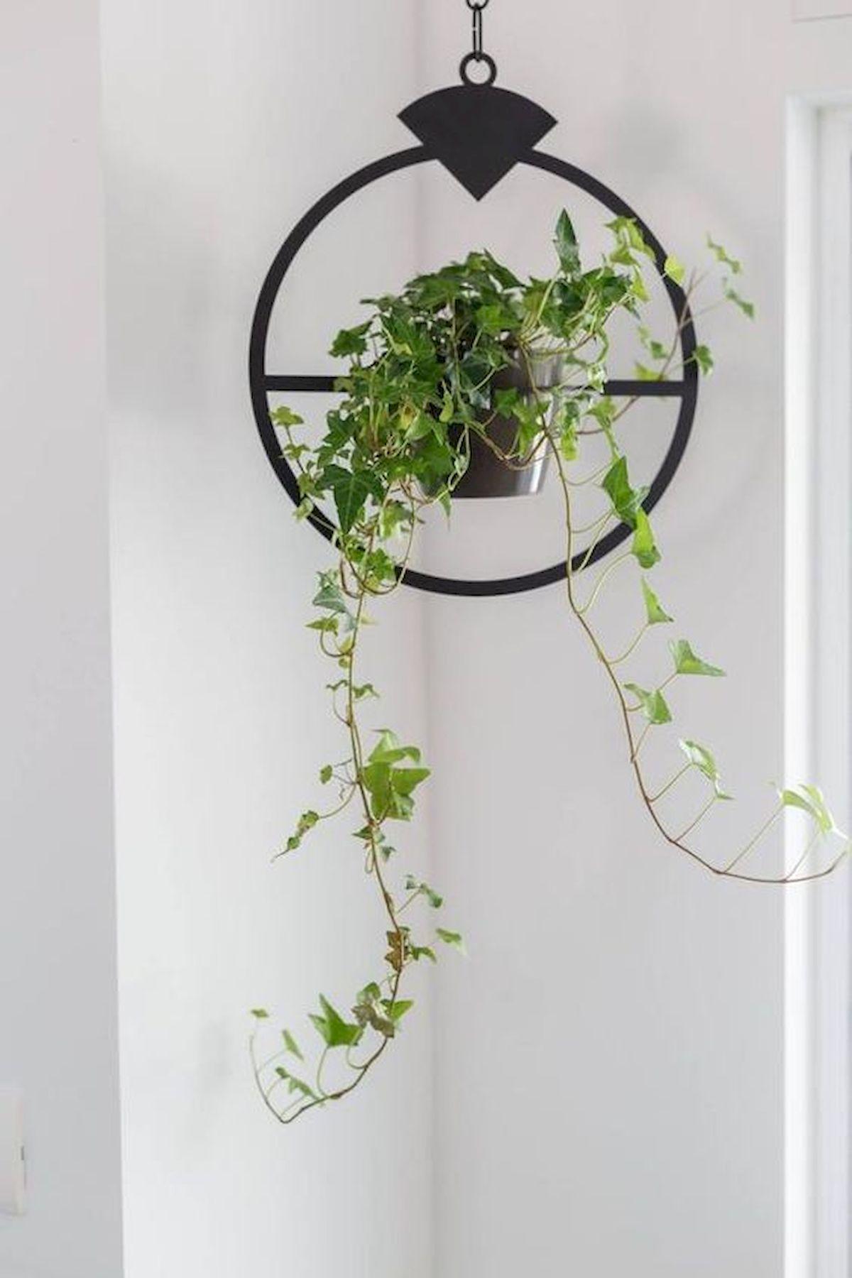 50 Stunning DIY Home Decor Ideas Dollar Store (9)