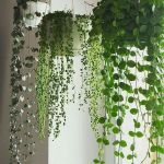 50 Awesome DIY Hanging Plants Ideas For Modern Backyard Garden (5)
