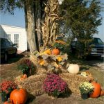 35 Beautiful DIY Fall Outdoor Decor Ideas You Will Like (35)