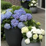20 Fantastic DIY Planter Ideas for Your Front Porch (4)