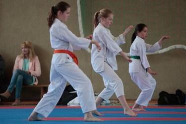 Karate Kinder und Jugendliche Turnier Detmold 2015 Kumite