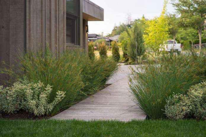1483638584682 | 20 потрясающих идей дизайна садовых дорожек