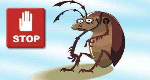 f3fa6960b52e3c842fd94fee5eb122ab_l | Сделайте мощное натуральное средство которое избавит вас от тараканов!