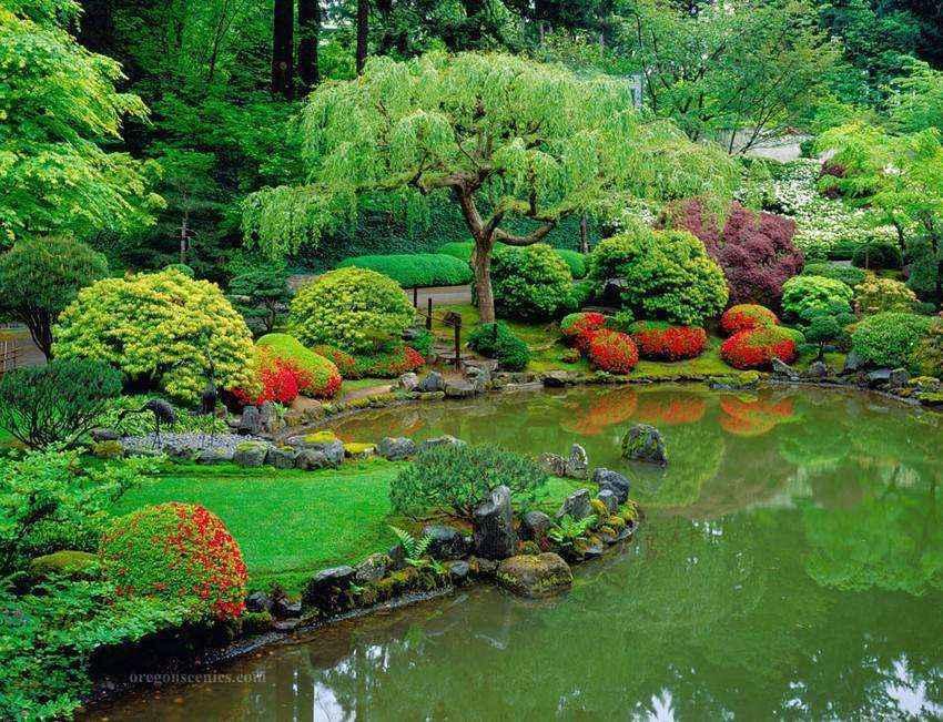 image3-41 | Золотые правила организации японского сада