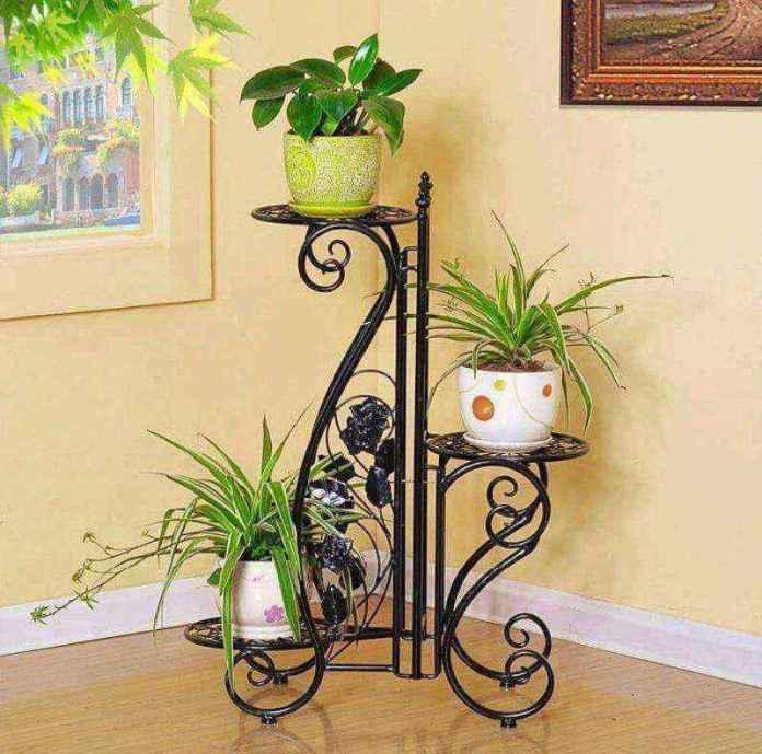 plantas-6   10 великолепных идей для украшения вашего дома растениями которые вам понравятся