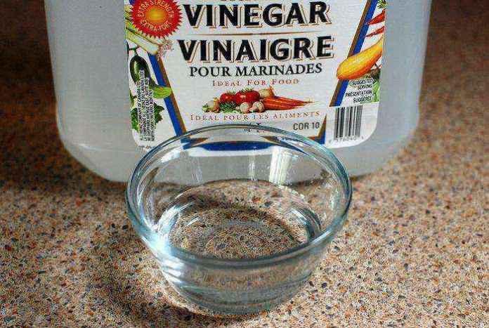 vinegar-768948_1280   10 вариантов использования уксуса в саду, о которых вы не знали