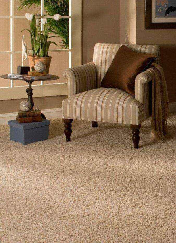 wool-carpet-cleaning-classic-living-room-furniture-675x929 | ТОП-10 инновационных экологичных напольных покрытий для вашего нового дома