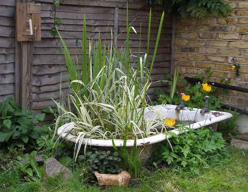 image2-35 | 10 проектов садовых прудиков из ванны своими руками