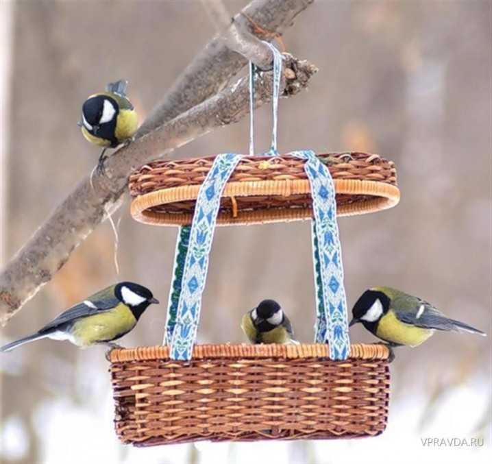 image6-99   Креативные кормушки для птиц