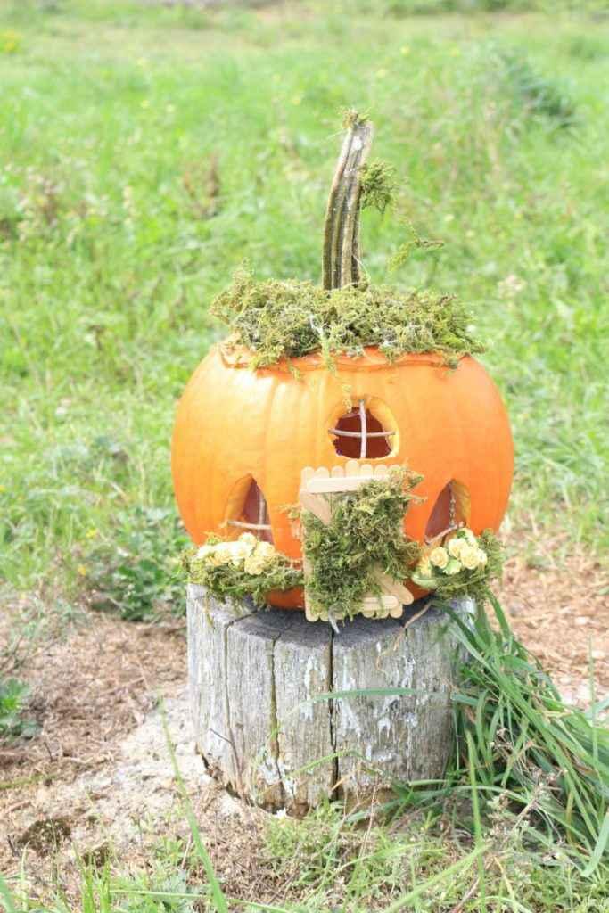 image7-46 | Очаровательные домики фей из тыквы