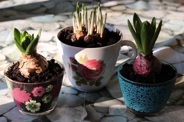 image2-52 | Потрясающие идеи самоделок из чашек и чайников