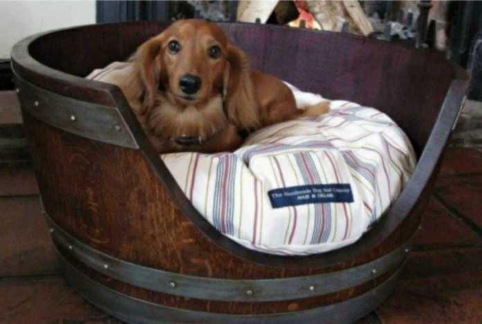 image5-15   Кровати для домашних животных из подручных материалов