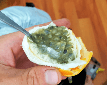 Granadilla - yummy!