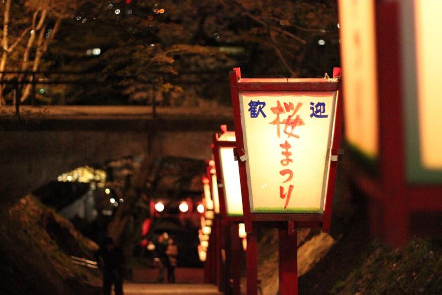 烏帽子山公園千本桜夜の様子