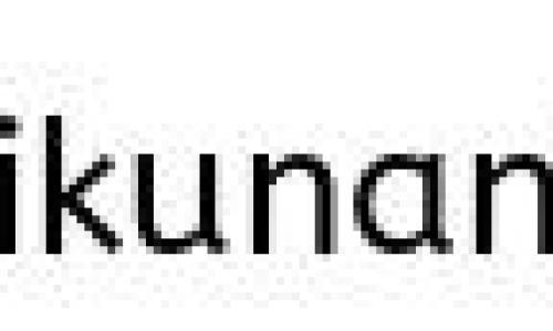 札幌雪まつり2018の雪ミクと韓国ゲスト情報!日程と会場も確認!