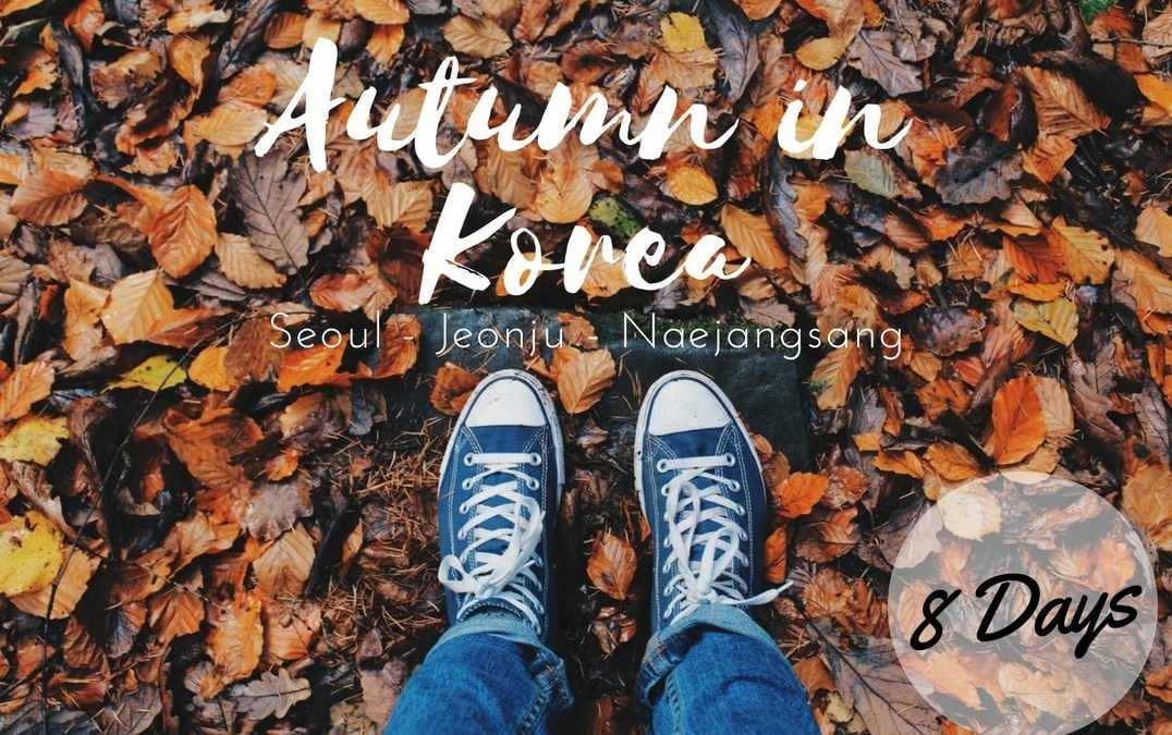 Open Trip Korea Selatan Autumn 2018