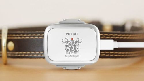 Xiaomi PetBit Akıllı Tasma Aparatı