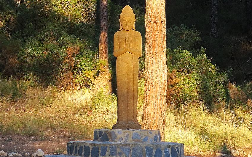 Residencia en el templo zen Luz Serena 2018