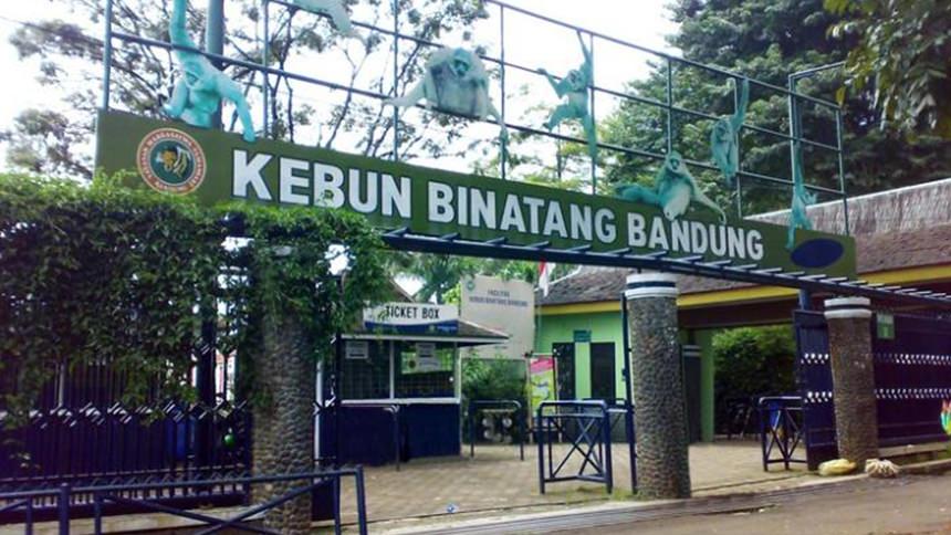 Kebun Binatang Bandung