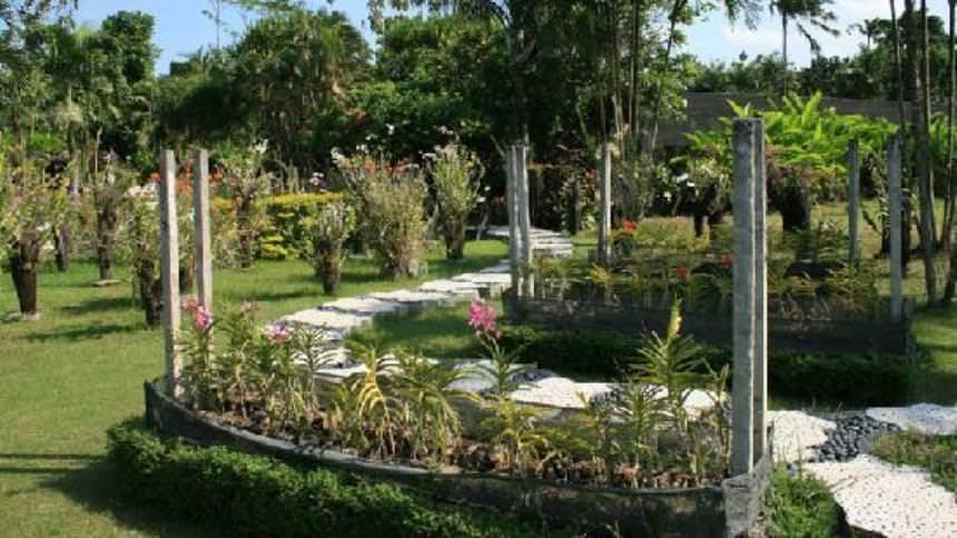 Bali Orchid Garden Bali Orchid Garden - Dolan Dolen