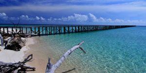 10 Kegiatan Seru yang Bisa Dolaners Lakukan Di Kepulauan Derawan