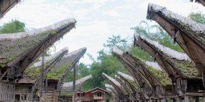 10 Kegiatan yang Wajib Dolaners Lakukan Saat Berlibur ke Tana Toraja
