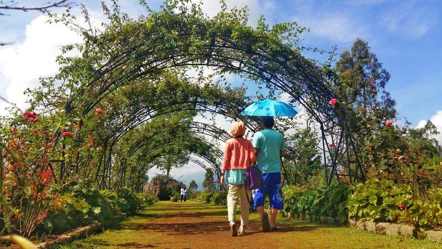 Taman Bunga Situhapa di Garut Taman Bunga Situhapa - Dolan Dolen