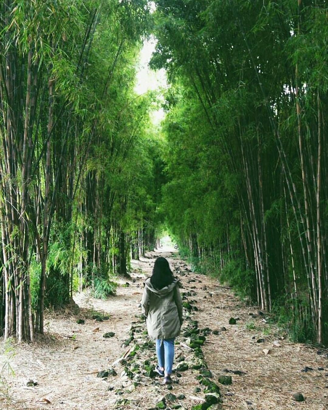Taman Sakura Keputih Surabaya