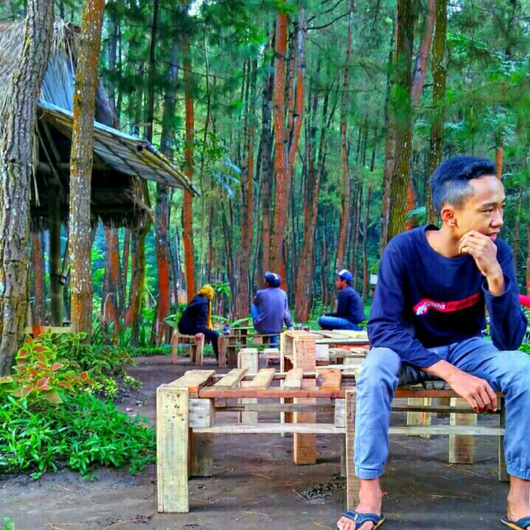 Pinus Cafe Ledok Ombo, Pinus Cafe Ledok Ombo Malang, Kabupaten Malang, Dolan Dolen, Dolaners Pinus Cafe Ledok Ombo via alfiandyalif - Dolan Dolen