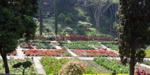 Taman Bunga Malang, Malang Raya, Dolan Dolen, Dolaners