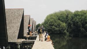 Hutan Mangrove PIK, Hutan Mangrove PIK Jakarta, Jakarta, Dolan Dolen, Dolaners
