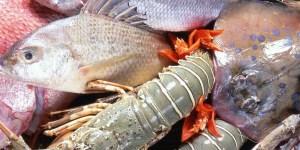 Kuliner Seafood Malang, Kota Malang, Dolan Dolen, Dolaners Kuliner Seafood Malang via ganti - Dolan Dolen