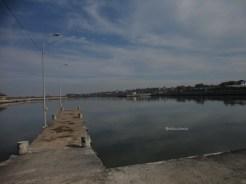 pelabuhan tanjung adikarto kulonprogo (143)