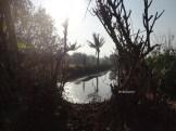 ekowisata mangrove baros kretek bantul (48)