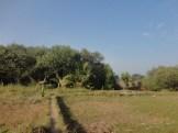ekowisata mangrove baros kretek bantul (62)