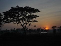 sunrise di pandak (1)