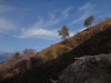 kawah gunung ijen banyuwangi (84)