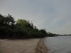 pantai bama, spot menarik lain di taman nasional baluran banyuwangi (1)