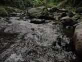curug nangka taman nasional gunung halimun salak bogor (135)