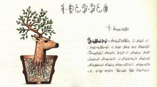 alcune_delle_illustrazioni_del_codex_seraphinianus_9274