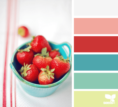 http://design-seeds.com/index.php/home/entry/berry-brights3