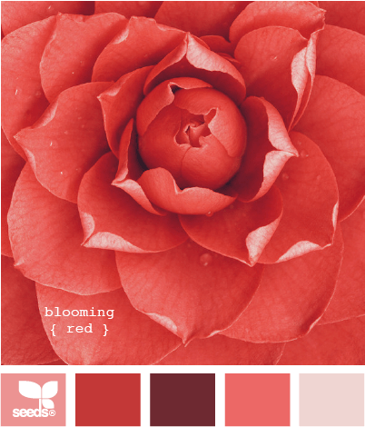 http://design-seeds.com/index.php/home/entry/blooming-red
