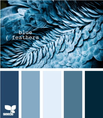 http://design-seeds.com/index.php/home/entry/blue-feathers