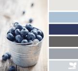 http://design-seeds.com/index.php/home/entry/blueberry-tones7