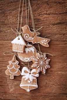 http://www.rodalenews.com/nickel-pincher-9-easy-edible-holiday-ornaments?page=1
