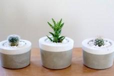 Concrete pots - http://www.justbecauseblooms.com.au/products/concrete-pots