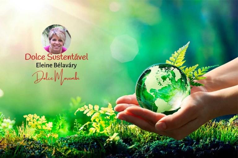 A cultura da sustentabilidade não é uma opção para as empresas, mas uma questão de sobrevivência!