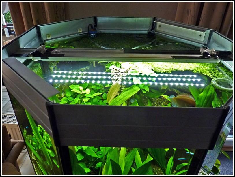 Aquarium Led Beleuchtung Selber Bauen 2012
