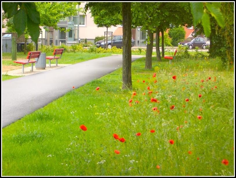 Aumann Garten Und Landschaftsbau Gmbh