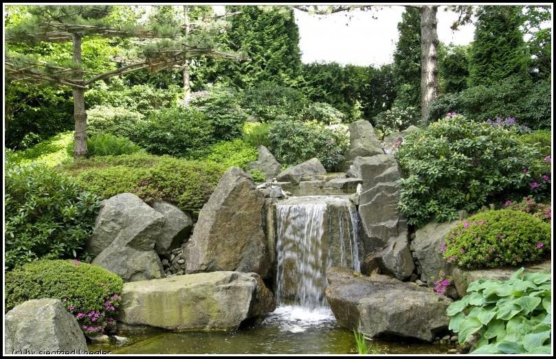 Bad Langensalza Japanischer Garten Kirschblütenfest